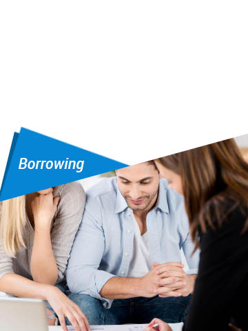 services-borrowing5